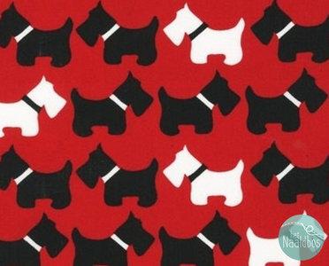 Robert Kaufman - urban zoology dogs